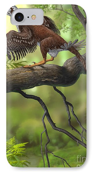 Jeholornis Prima Perched On A Tree IPhone Case by Sergey Krasovskiy