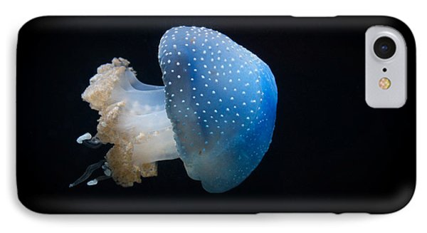 Jelly IPhone Case by Alicia Doyle