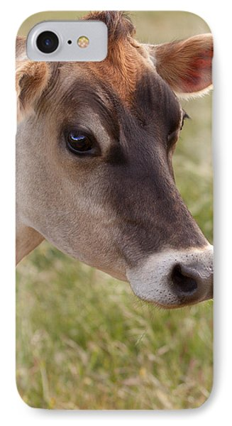 Jersey Cow Portrait Phone Case by Michelle Wrighton