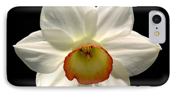 IPhone Case featuring the photograph Jonquil 1 by Rose Santuci-Sofranko