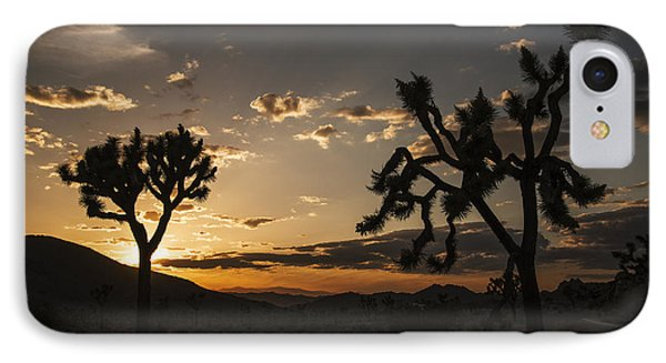 Joshua Tree Sunset Silhouette 2 IPhone Case by Lee Kirchhevel