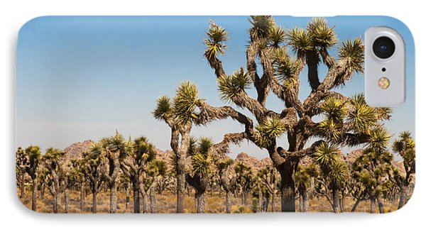 Joshua Trees  IPhone Case by Penny Lisowski