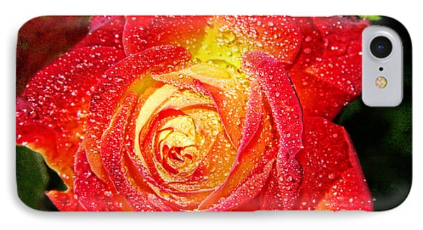 Joyful Rose Phone Case by Mariola Bitner