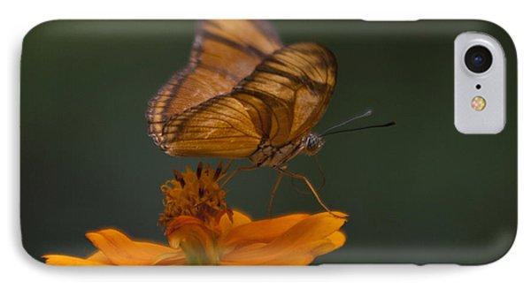 Julia Butterfly IPhone Case