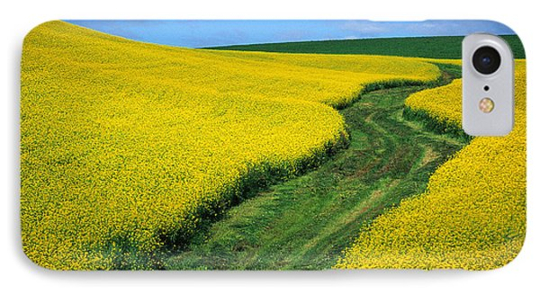 July Canola IPhone Case by Latah Trail Foundation