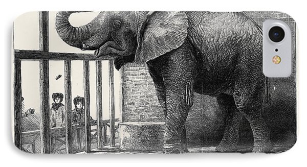 Jumbo, The Big African Elephant At The Zoological Gardens IPhone Case by English School