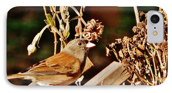 IPhone Case featuring the photograph Junco Jaunt 2 by VLee Watson