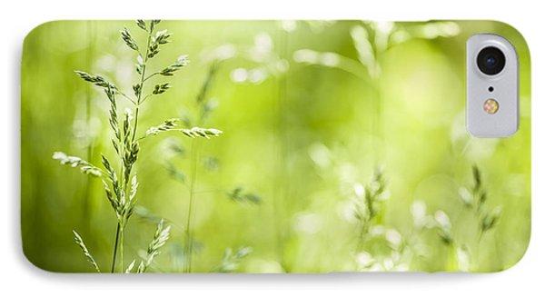June Grass Flowering Phone Case by Elena Elisseeva