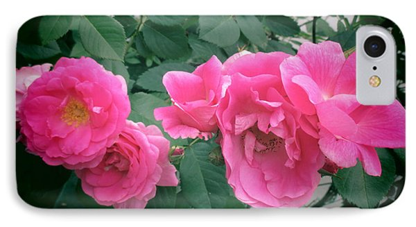 June Rose II IPhone Case