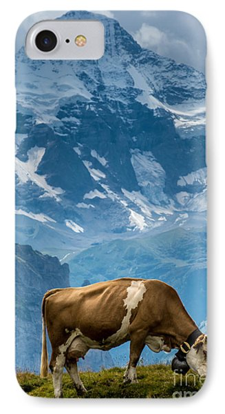 Jungfrau Cow - Grindelwald - Switzerland IPhone Case