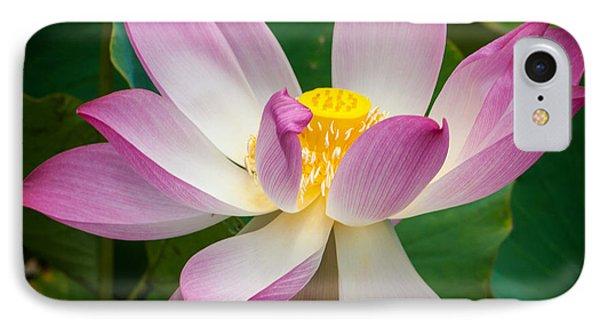 Jungle Garden Flower IPhone Case
