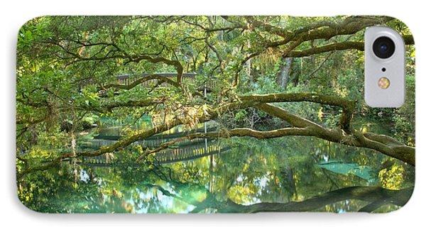 Juniper Springs Fern Hammock IPhone Case