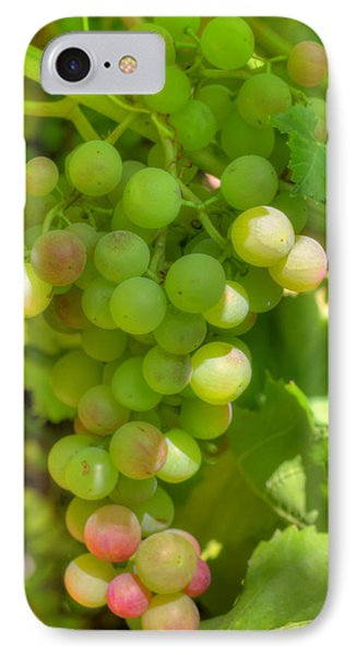 Just A Little More Time On The Vine IPhone Case by Heidi Smith