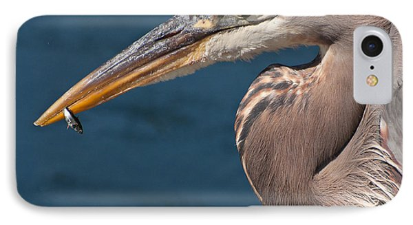 Just An Appetizer For A Great Blue Heron Phone Case by Kasandra Sproson