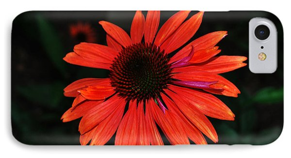 Just As Pretty IPhone Case by Judy Wolinsky