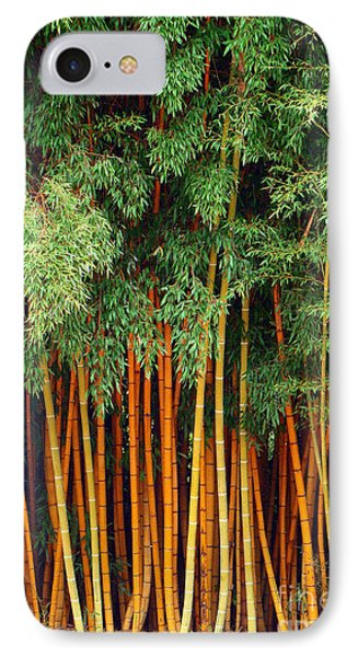 IPhone Case featuring the photograph Just Bamboo by Sue Melvin