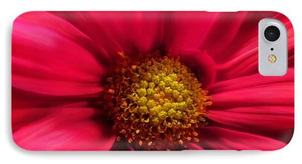Just Because Flowers IPhone Case