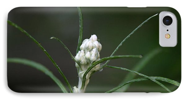 IPhone Case featuring the photograph Just Budding by Denyse Duhaime