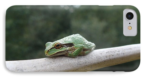 Just Chillin' IPhone Case by Cheryl Hoyle