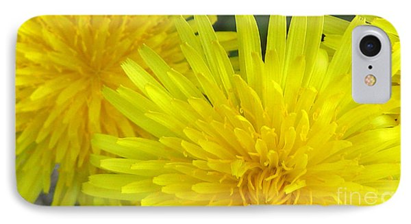 Just Dandy IPhone Case by Janice Westerberg