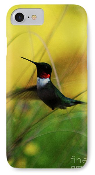 Just Flying IPhone Case by Lori Tambakis