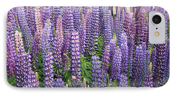 Just Lupins IPhone Case by Nareeta Martin