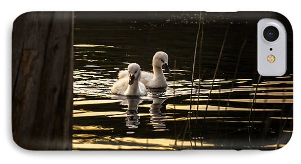 Just The Two Of Us IPhone Case by Peter Scott