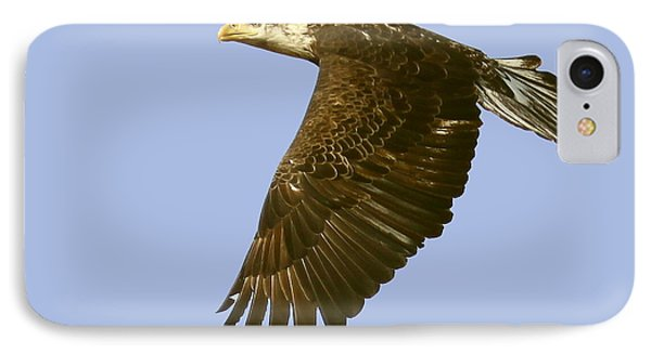 IPhone Case featuring the photograph Juvenile Eagle Flight by Myrna Bradshaw