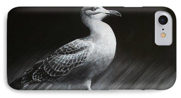 Juvenile Gull IPhone Case