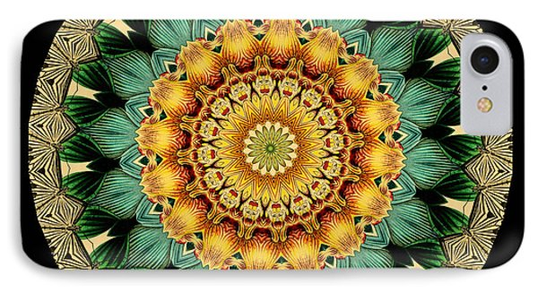 Kaleidoscope From Old Entomology Illustration Of Butterflies Phone Case by Amy Cicconi