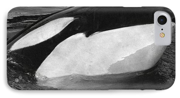 Kandu Orca Seattle Aquarium 1969 Pat Hathaway Photo Killer Whale Seattle Phone Case by California Views Mr Pat Hathaway Archives
