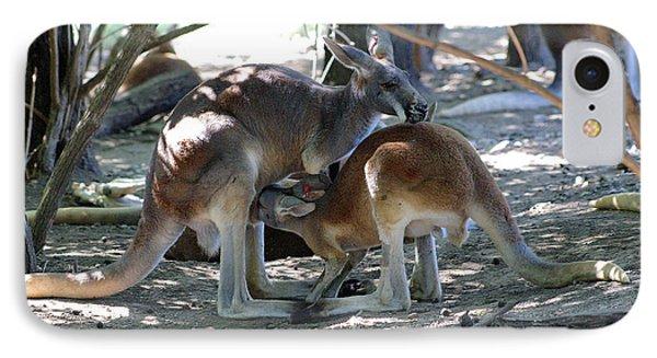 Kangaroo Nurse-6 Phone Case by Gary Gingrich Galleries