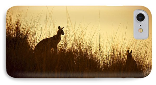 Kangaroo Silhouettes Phone Case by Tim Hester