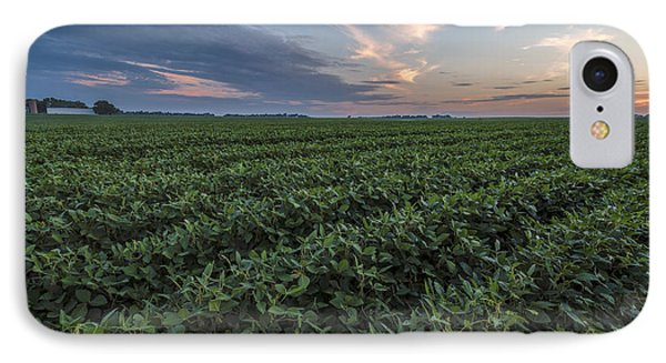 Kansas Soybeans IPhone Case