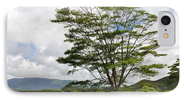 IPhone Case featuring the photograph Kauai Umbrella Tree by Shane Kelly