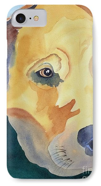 Keeping A Close Eye IPhone Case by Barbara Tibbets