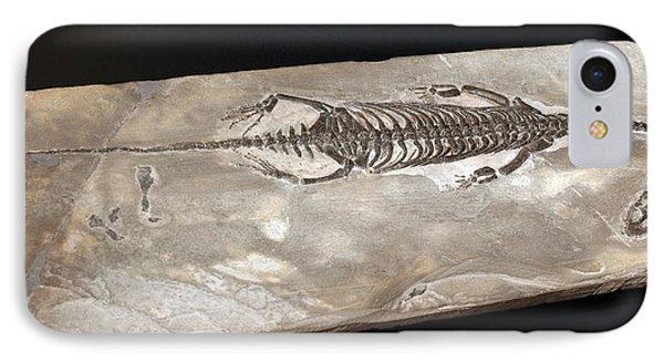 Keichousaurus Hui IPhone Case by Dirk Wiersma