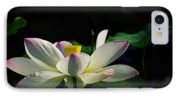 Kenilworth Garden Two IPhone Case by John S