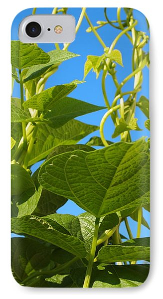 IPhone Case featuring the photograph Kentucky Pole Beans by Deborah Fay