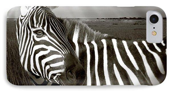 Kenya Black & White Of Zebra And Plain IPhone Case