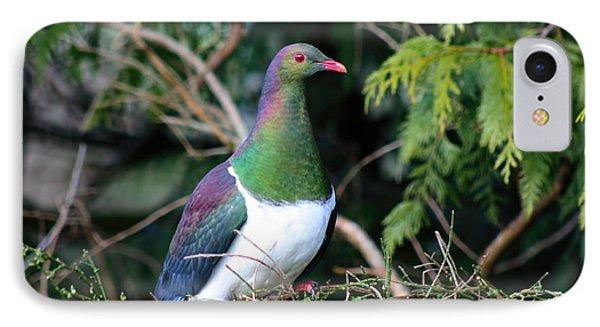 Kerehu - New Zealand Wood Pigeon Phone Case by Amanda Stadther