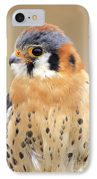 Kestral IPhone Case by Charline Xia