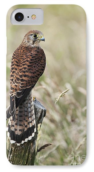 Kestrel IPhone 7 Case