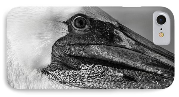 Key West Pelican Closeup - Square - Black And White IPhone Case