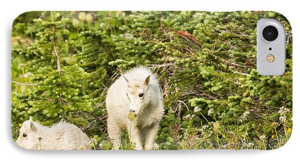 Kids In Glacier Np 3 Phone Case by Natural Focal Point Photography