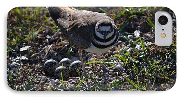 Killdeer Guarding Her Eggs IPhone Case by Tara Potts