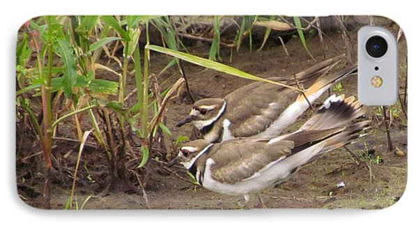 IPhone Case featuring the photograph Killdeer Pair by I'ina Van Lawick