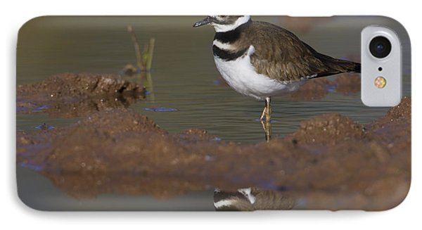 IPhone Case featuring the photograph Killdeer Reflection by Bryan Keil