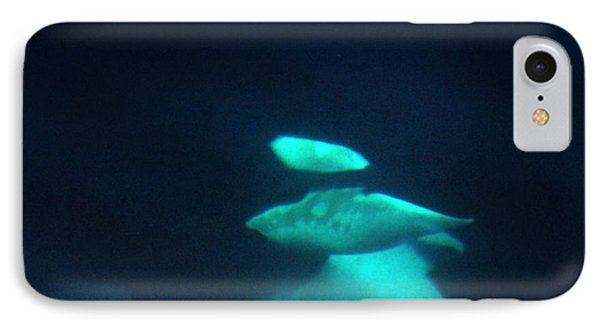 IPhone Case featuring the photograph Killer Whales Orcas Under Water  Off The San Juan Islands 1986 by California Views Mr Pat Hathaway Archives