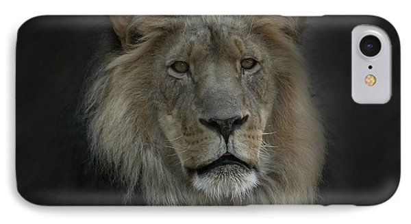 King Of Beasts Portrait IPhone Case by Ernie Echols
